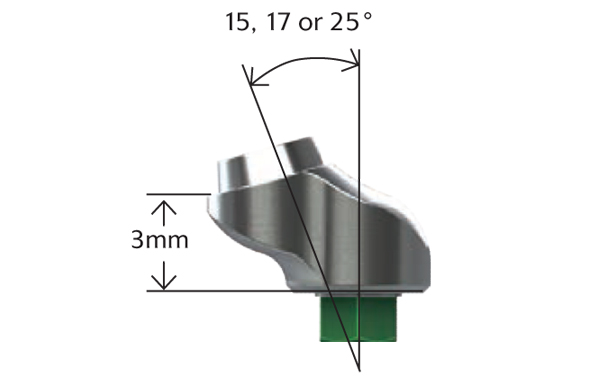 Angled Abutment for Screw - Hexed